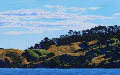 Wanganui Island 7pm